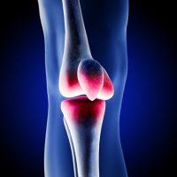Najczęstsze dysfunkcje stawów: kolanowego i barkowego w ujęciu terapii Cranio – sacralnej